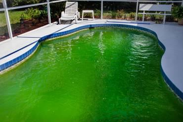 El agua de la piscina está verde: ¿cómo solucionarlo?